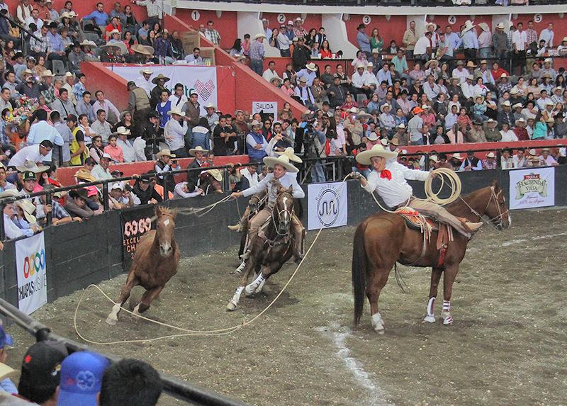 ariel cabanas acertando una de sus manganas a caballo por tres regalos